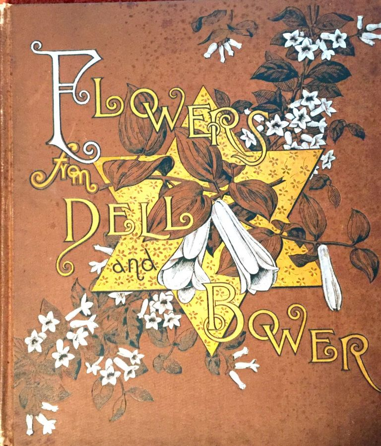 FLOWERS FROM DELL AND BOWER; Poems Illustrated by Susie Barstow Skelding. Susie Barstow Skelding.