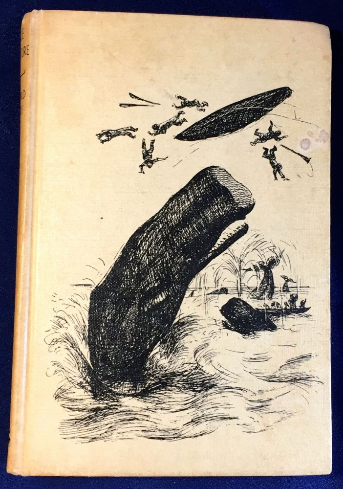 WHALE ADVENTURE; Illustrated from drawings by PAT MARRIOTT. Willard Price.