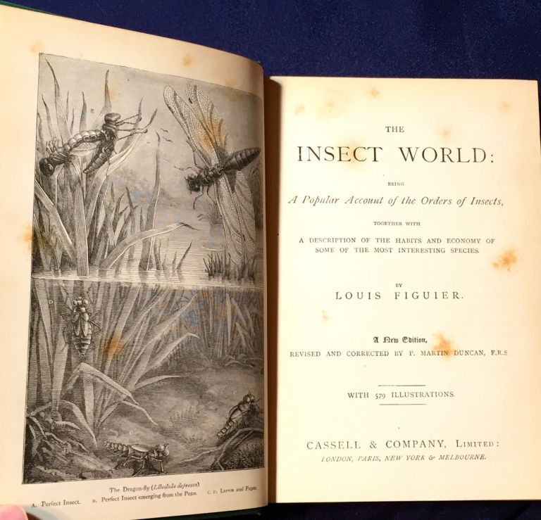 THE INSECT WORLD; and A Popular Account of the Order of Insects, / Together with a Description of the Habits and Economy of Some of the Most Interesting Species / A New Edition revised and corrected by P. Martin Duncan, F.R.S. Louis Figuier.