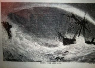 THE WATER WORLD; A Popular Treatise / on the broad, broad ocean . . .