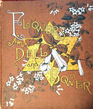 FLOWERS FROM DELL AND BOWER; Poems Illustrated by Susie Barstow Skelding. Susie Barstow Skelding