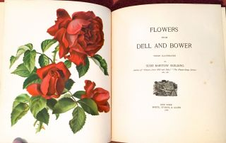FLOWERS FROM DELL AND BOWER; Poems Illustrated by Susie Barstow Skelding