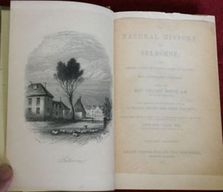 THE NATURAL HISTORY OF SELBORNE; with Observations on Various Parts of Nature; and Naturalist's Calendar by the Late Rev. Gilbert White, A.M. / with Additions and Supplementary Notes by Sir William Jardine, Bart, etc. / Edited, with further illustrations, a biographcal sketch of the author, and a complete index, by Edward Jesse, Esq. / With Forty Engravings