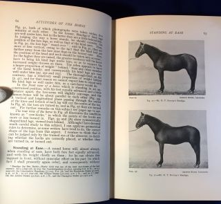POINTS OF THE HORSE; A Treatise on the Conformation, Movements, Breeds and Evolution of the Horse / Illustrated by 660 Reproductions of Photographs and Drawings