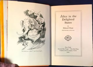 ALICE IN THE DELIGHTED STATES; With Illustrations by Rea Irvin