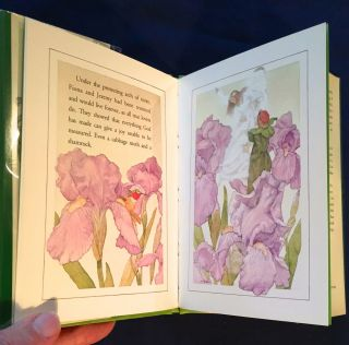 THE CABBAGE MOTH AND THE SHAMROCK; A Story by Ethel Marbach / Illustrated by Michael Hague