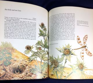 CARL LINNAEUS TRAVELS; Nature Classics / Edited by David Black / Illustrated by Stephen Lee