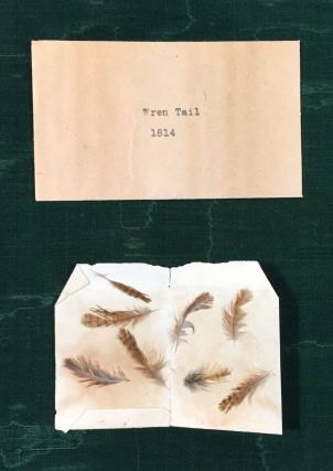 SPECIMENS OF BIRD FEATHERS & AUDUBON'S HAIR ; ...Formerly Properties of The Heirs of Grace Phillips Johnson