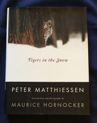 TIGERS IN THE SNOW; Peter Matthiessen / Introduction and photographs by Maurice Hornocker. Peter...