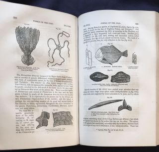 A MANUAL OF ELEMENTARY GEOLOGY; By Sir Charles Lyell, M.A. F.R.S. / Revised from the Sixth Edition, Greatly Enlarged / Illustrated with 750 Woodcuts