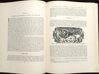 PREHISTORIC EUROPE; The Economic Basis / with 16 plates and 180 text illustrations